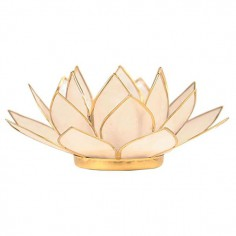Photophore Lotus en...