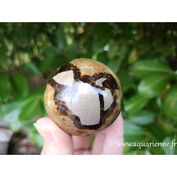 Septaria de Madagascar - Sphère de 55mm de diamètre