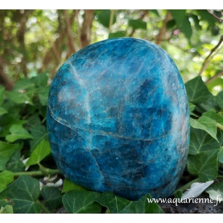 Apatite bleue - forme libre 780g